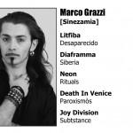 Sinezamia 2012